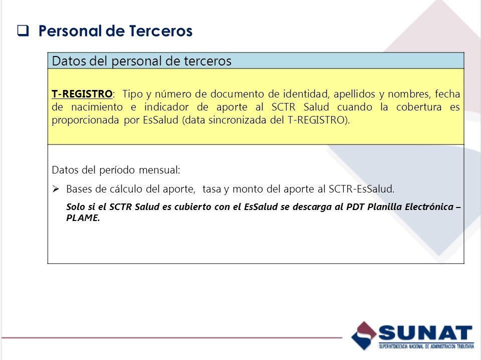 Datos del personal de terceros T-REGISTRO: Tipo y número de documento de identidad, apellidos y nombres, fecha de nacimiento e indicador de aporte al