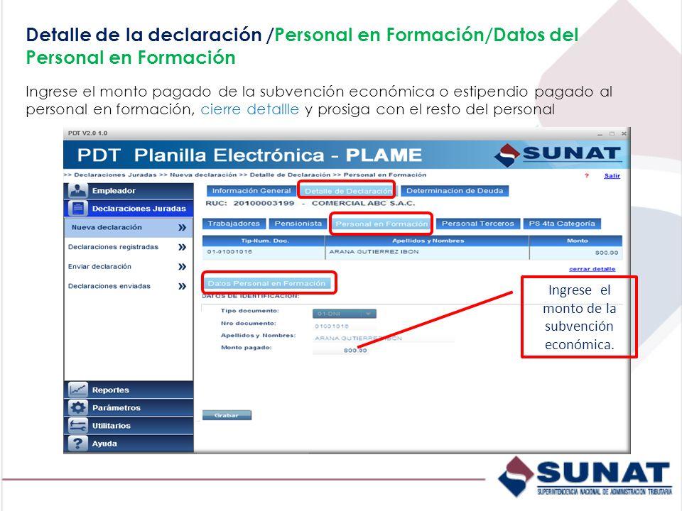 Detalle de la declaración /Personal en Formación/Datos del Personal en Formación Ingrese el monto pagado de la subvención económica o estipendio pagad