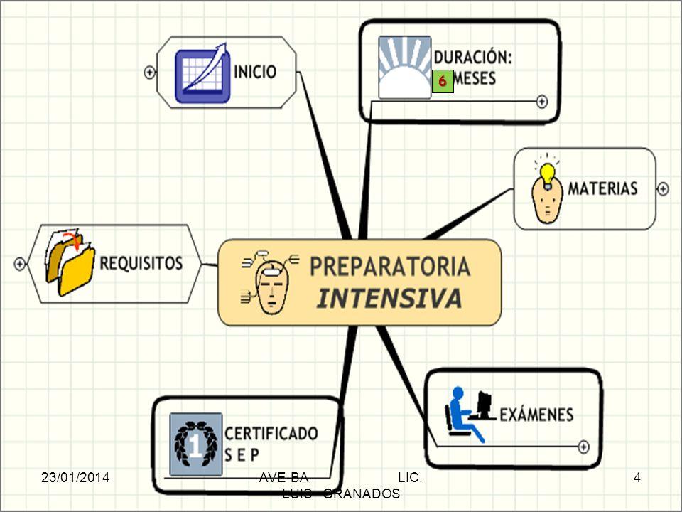 PREPARATORIA INTENSIVA 6 23/01/2014AVE-BA LIC. LUIS GRANADOS 4