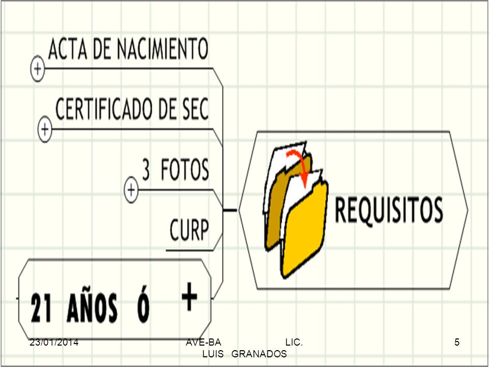 REQUISITOS 23/01/2014AVE-BA LIC. LUIS GRANADOS 5