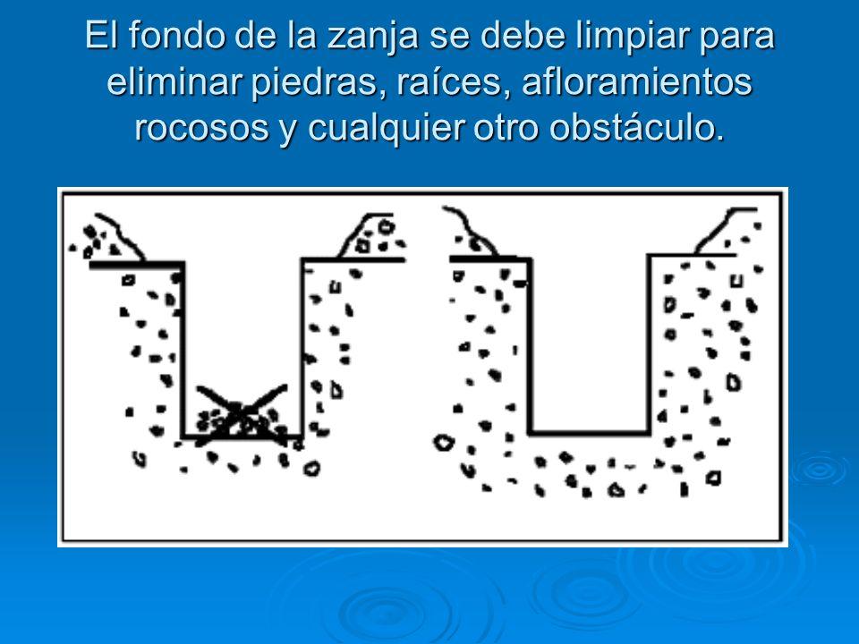 El fondo de la zanja se debe limpiar para eliminar piedras, raíces, afloramientos rocosos y cualquier otro obstáculo.