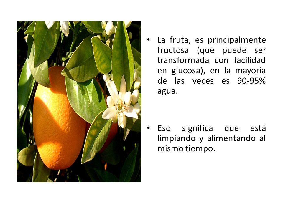 La fruta, es principalmente fructosa (que puede ser transformada con facilidad en glucosa), en la mayoría de las veces es 90-95% agua. Eso significa q