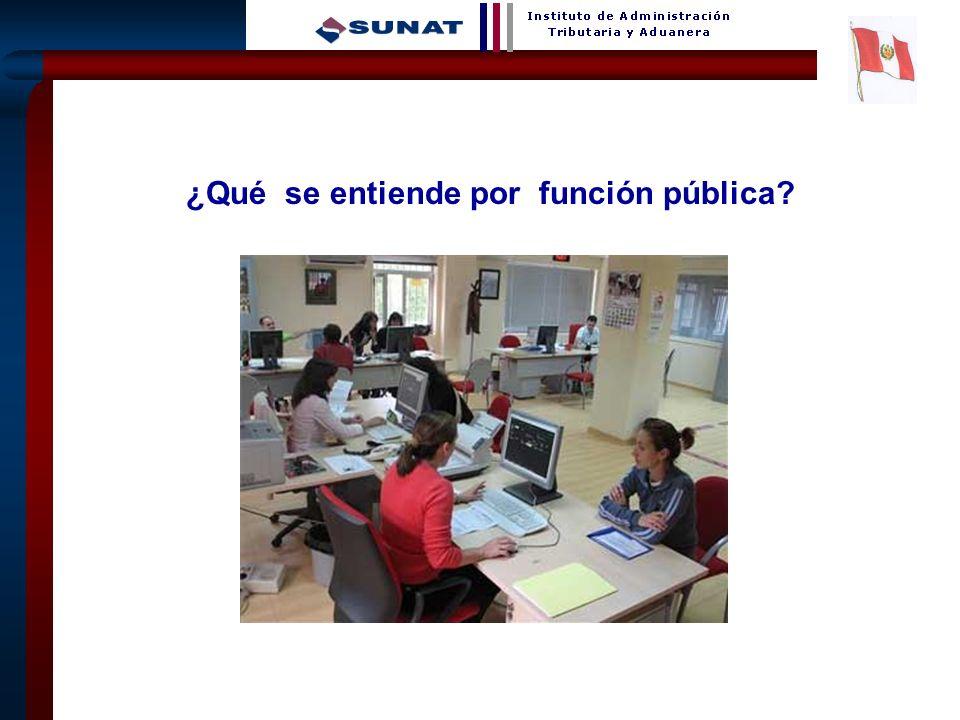 2 ¿Qué se entiende por función pública?