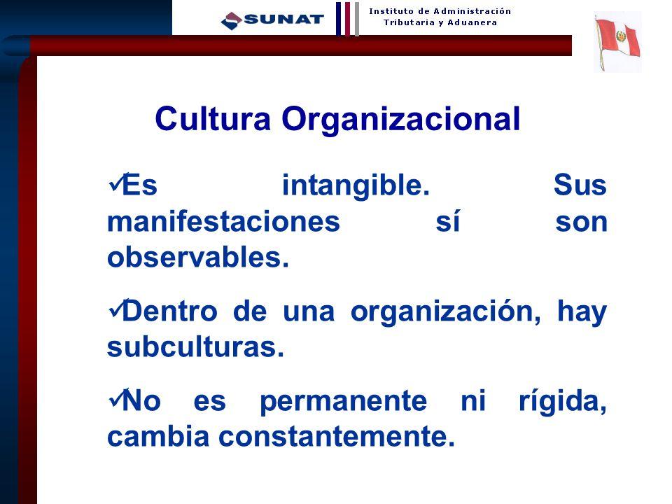22 Es intangible. Sus manifestaciones sí son observables. Dentro de una organización, hay subculturas. No es permanente ni rígida, cambia constantemen