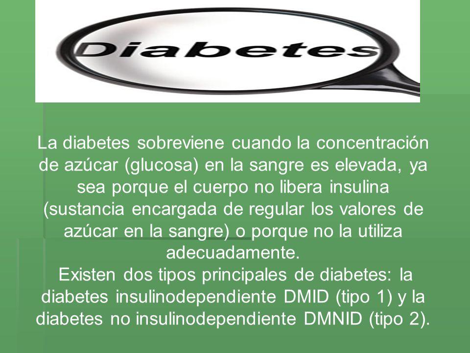 La diabetes sobreviene cuando la concentración de azúcar (glucosa) en la sangre es elevada, ya sea porque el cuerpo no libera insulina (sustancia enca