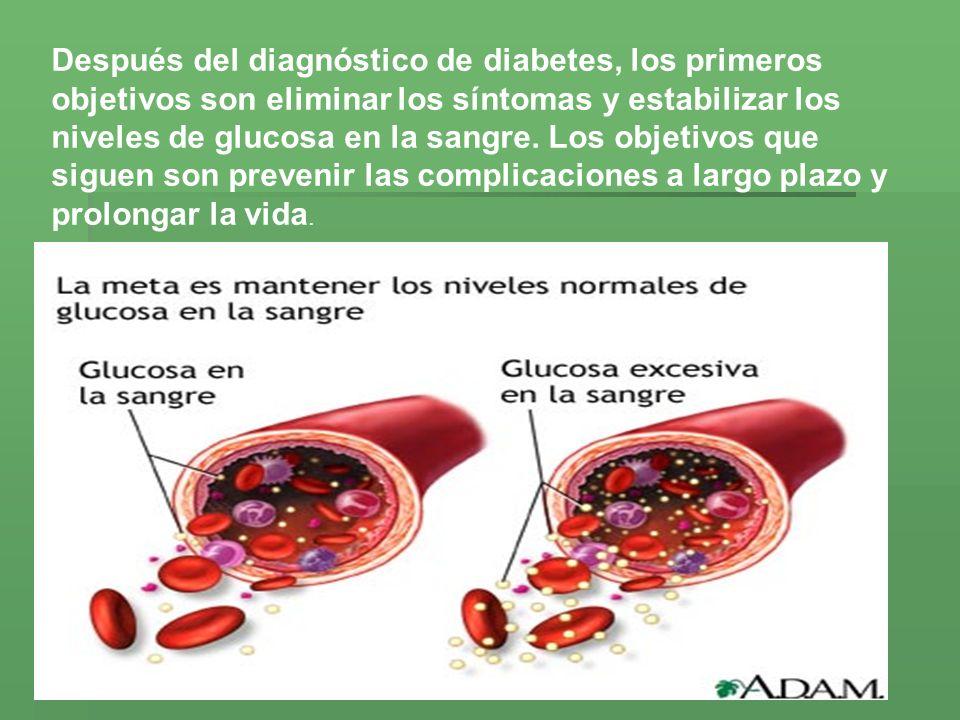 Después del diagnóstico de diabetes, los primeros objetivos son eliminar los síntomas y estabilizar los niveles de glucosa en la sangre. Los objetivos