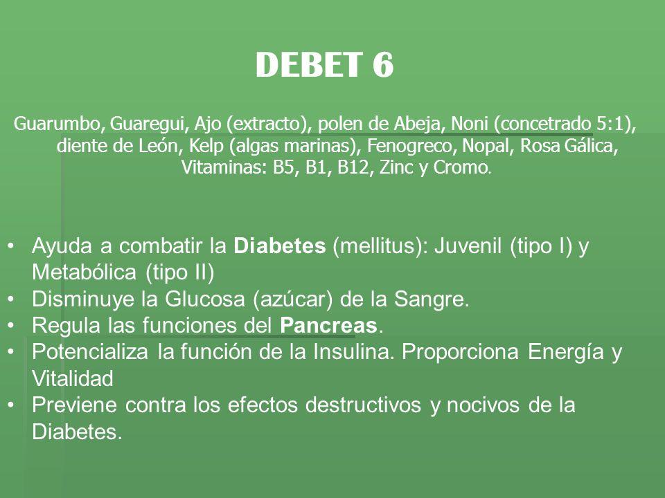 DEBET 6 Guarumbo, Guaregui, Ajo (extracto), polen de Abeja, Noni (concetrado 5:1), diente de León, Kelp (algas marinas), Fenogreco, Nopal, Rosa Gálica