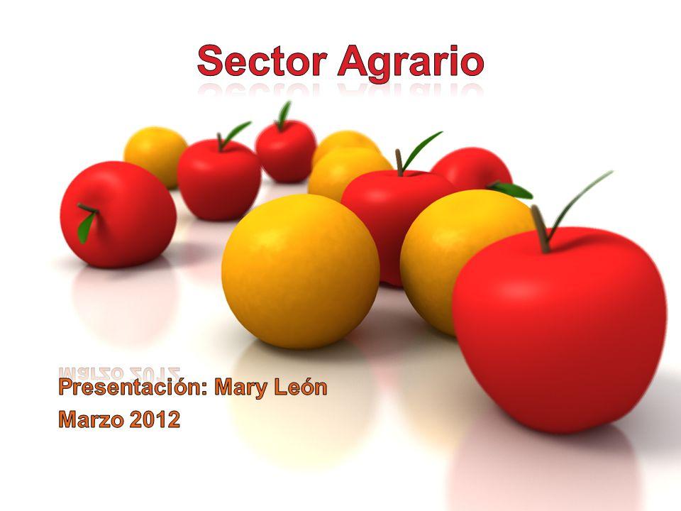 MARCO NORMATIVO Ley 27360 Ley que aprueba las normas de promoción del Sector Agrario (31/10/2000) Ley 28574 Ley que precisa los alcances de la Ley 27360 (6/07/2005) Decreto Supremo N° 007-2002-AG, aplica a actividades agroindustriales (08/02/2002) Decreto Supremo N° 049-2002-AG, Reglamento de la Ley 27360 (11/09/2002)