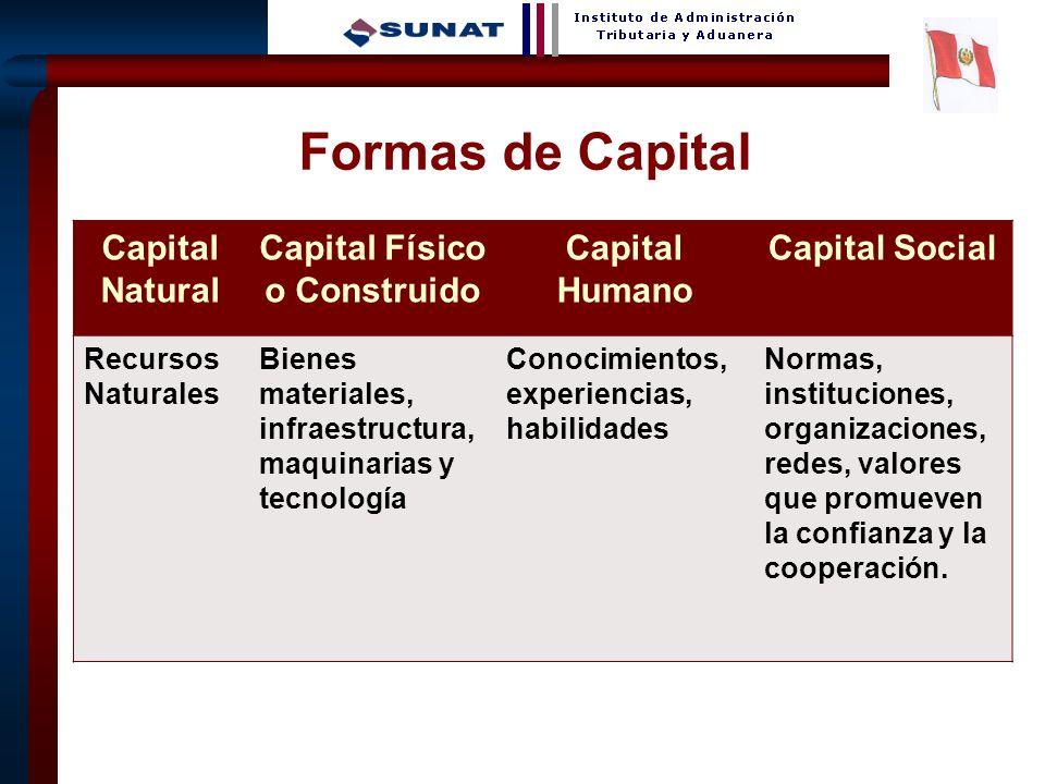2 Formas de Capital Capital Natural Capital Físico o Construido Capital Humano Capital Social Recursos Naturales Bienes materiales, infraestructura, m