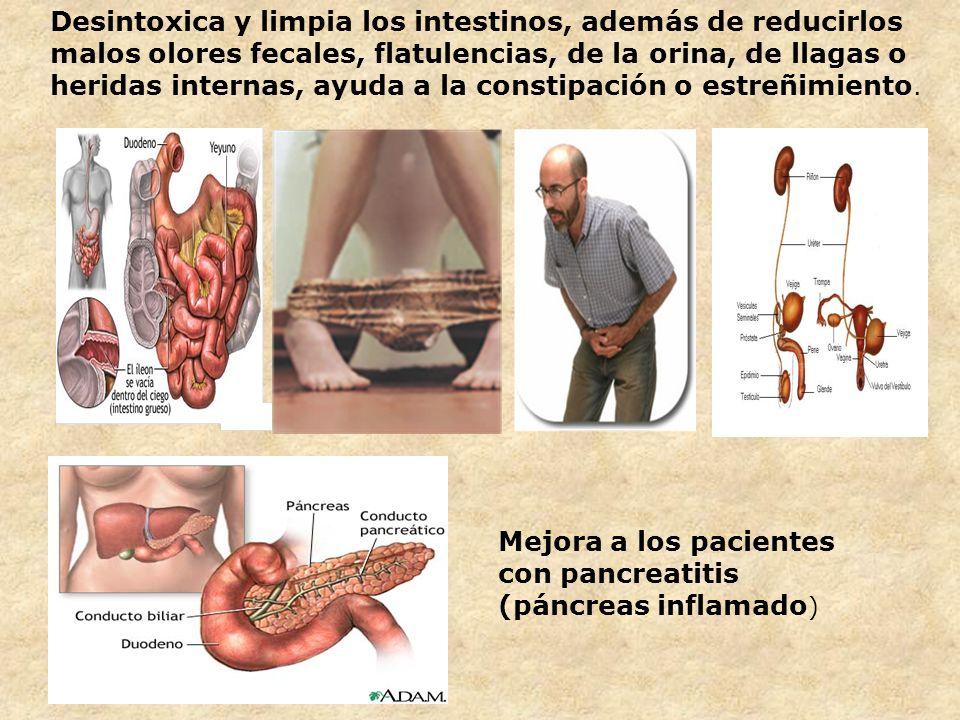 Desintoxica y limpia los intestinos, además de reducirlos malos olores fecales, flatulencias, de la orina, de llagas o heridas internas, ayuda a la co
