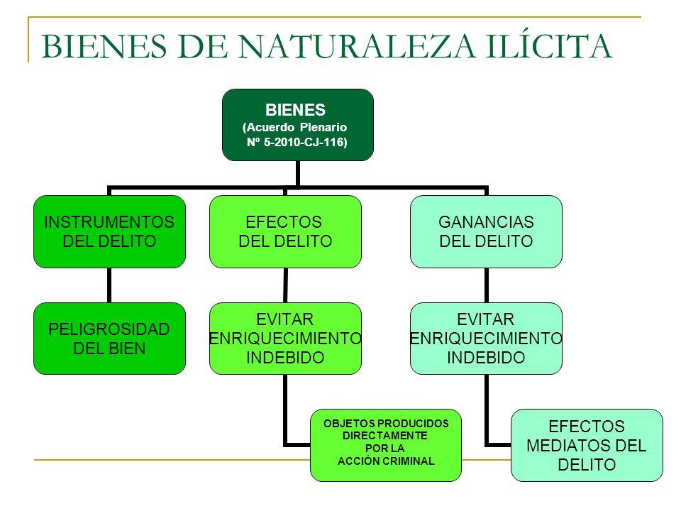 BIENES DE NATURALEZA ILÍCITA BIENES (Acuerdo Plenario Nº 5-2010-CJ-116) INSTRUMENTOS DEL DELITO PELIGROSIDAD DEL BIEN EFECTOS DEL DELITO EVITAR ENRIQUECIMIENTO INDEBIDO OBJETOS PRODUCIDOS DIRECTAMENTE POR LA ACCIÓN CRIMINAL GANANCIAS DEL DELITO EVITAR ENRIQUECIMIENTO INDEBIDO EFECTOS MEDIATOS DEL DELITO