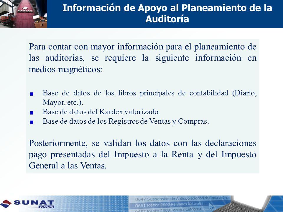 Información de Apoyo al Planeamiento de la Auditoría Para contar con mayor información para el planeamiento de las auditorías, se requiere la siguiente información en medios magnéticos: Base de datos de los libros principales de contabilidad (Diario, Mayor, etc.).