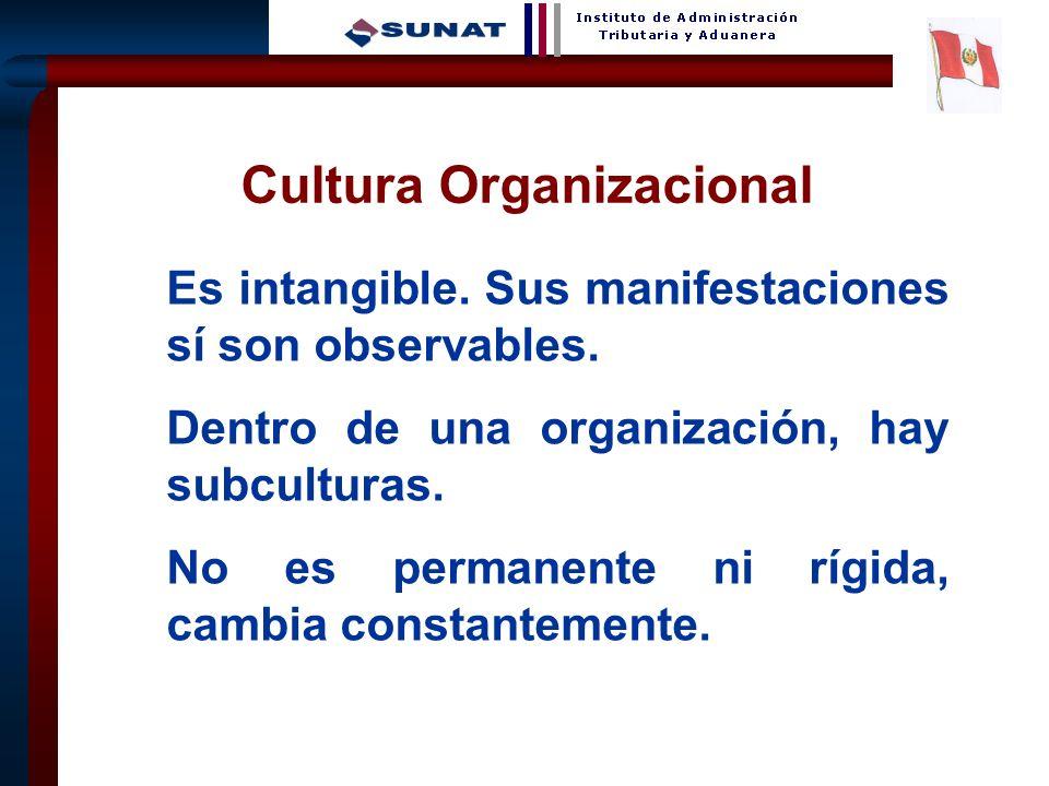 14 Cultura es lo que queda después de haber olvidado lo que se aprendió. André Maurois