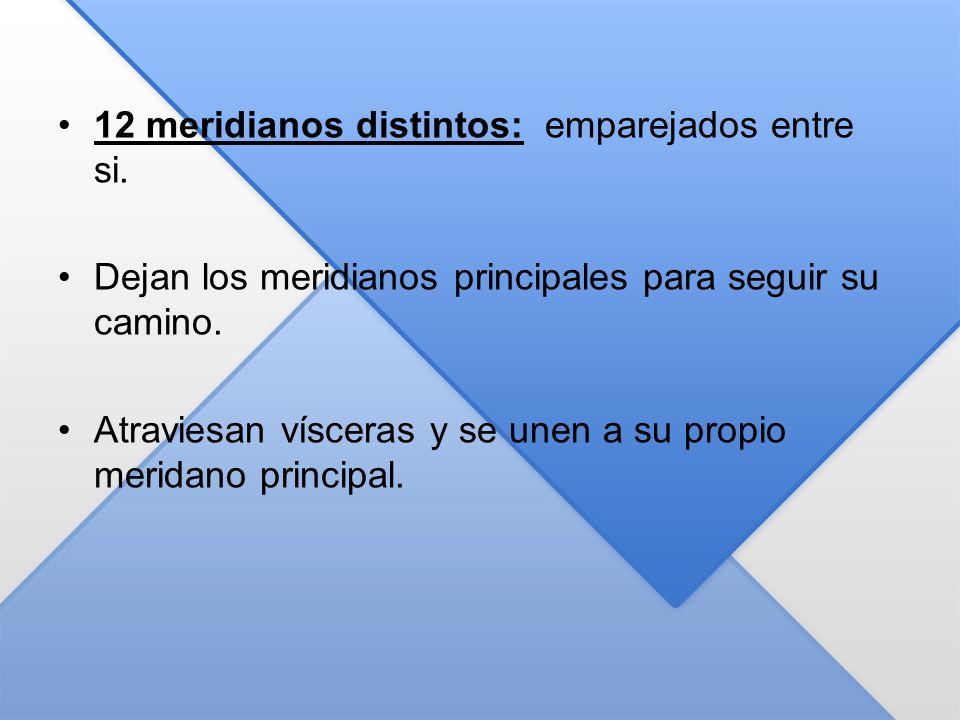 12 meridianos distintos: emparejados entre si. Dejan los meridianos principales para seguir su camino. Atraviesan vísceras y se unen a su propio merid