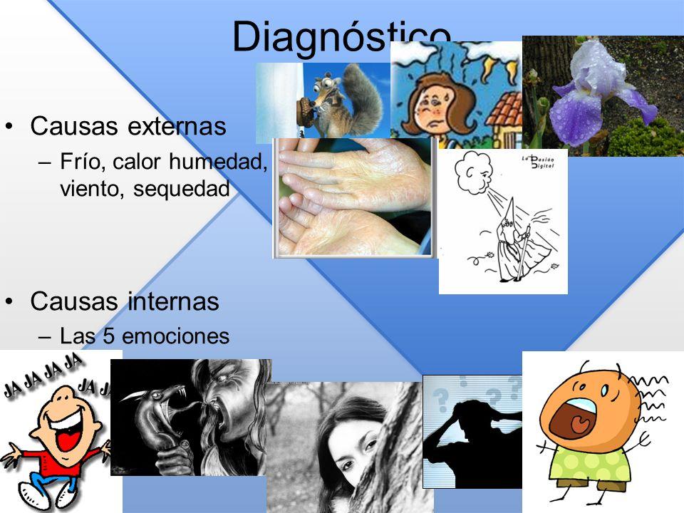 Diagnóstico Causas externas –Frío, calor humedad, viento, sequedad Causas internas –Las 5 emociones