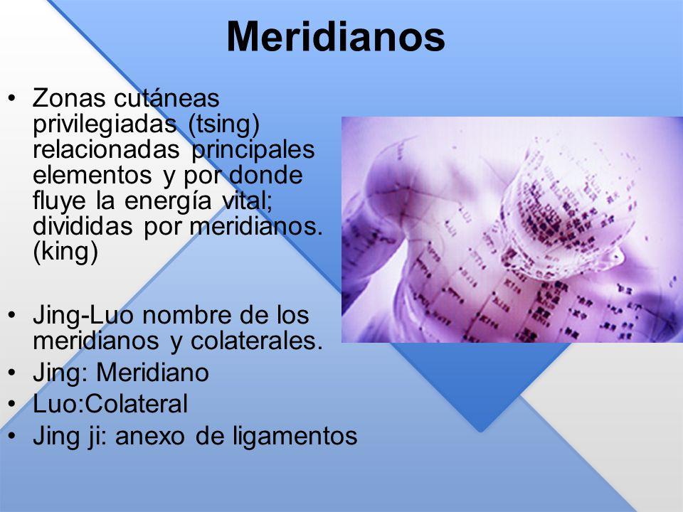 Meridianos Zonas cutáneas privilegiadas (tsing) relacionadas principales elementos y por donde fluye la energía vital; divididas por meridianos. (king