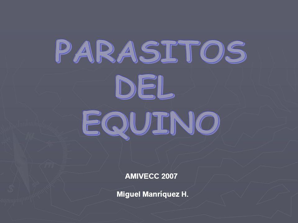 AMIVECC 2007 Miguel Manríquez H.