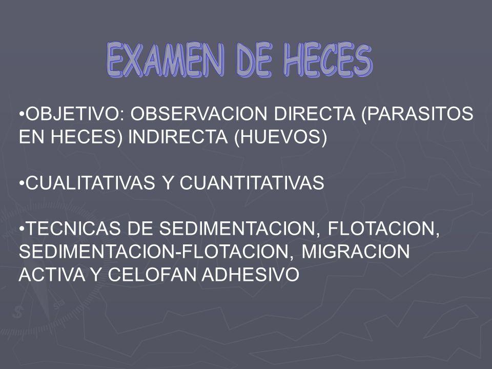 OBJETIVO: OBSERVACION DIRECTA (PARASITOS EN HECES) INDIRECTA (HUEVOS) CUALITATIVAS Y CUANTITATIVAS TECNICAS DE SEDIMENTACION, FLOTACION, SEDIMENTACION