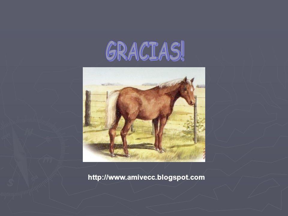http://www.amivecc.blogspot.com