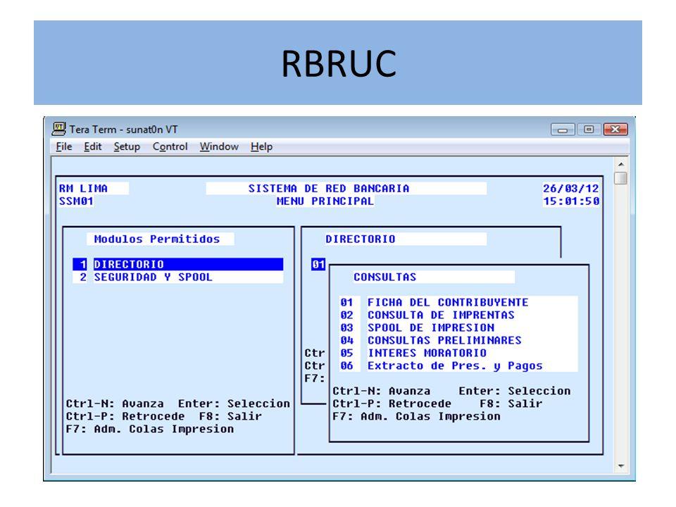 RSIRAT Sistema que busca redefinir y desarrollar el sistema y los procedimientos que controlan la deuda tributaria a fin de contar con información confiable y oportuna.
