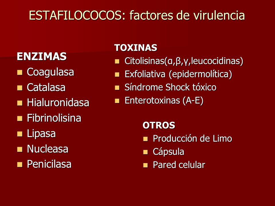 ESTAFILOCOCOS: factores de virulencia ENZIMAS Coagulasa Coagulasa Catalasa Catalasa Hialuronidasa Hialuronidasa Fibrinolisina Fibrinolisina Lipasa Lip