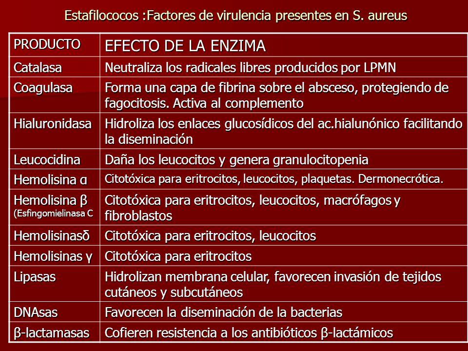 Estafilococos :Factores de virulencia presentes en S. aureus PRODUCTO EFECTO DE LA ENZIMA Catalasa Neutraliza los radicales libres producidos por LPMN