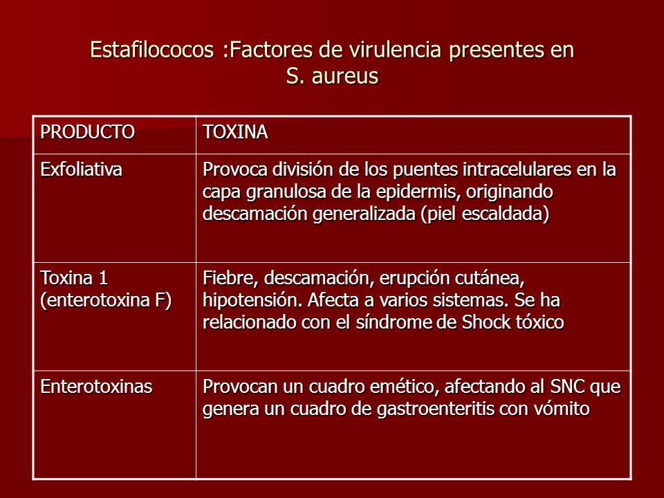 Estafilococos :Factores de virulencia presentes en S. aureus PRODUCTOTOXINA Exfoliativa Provoca división de los puentes intracelulares en la capa gran