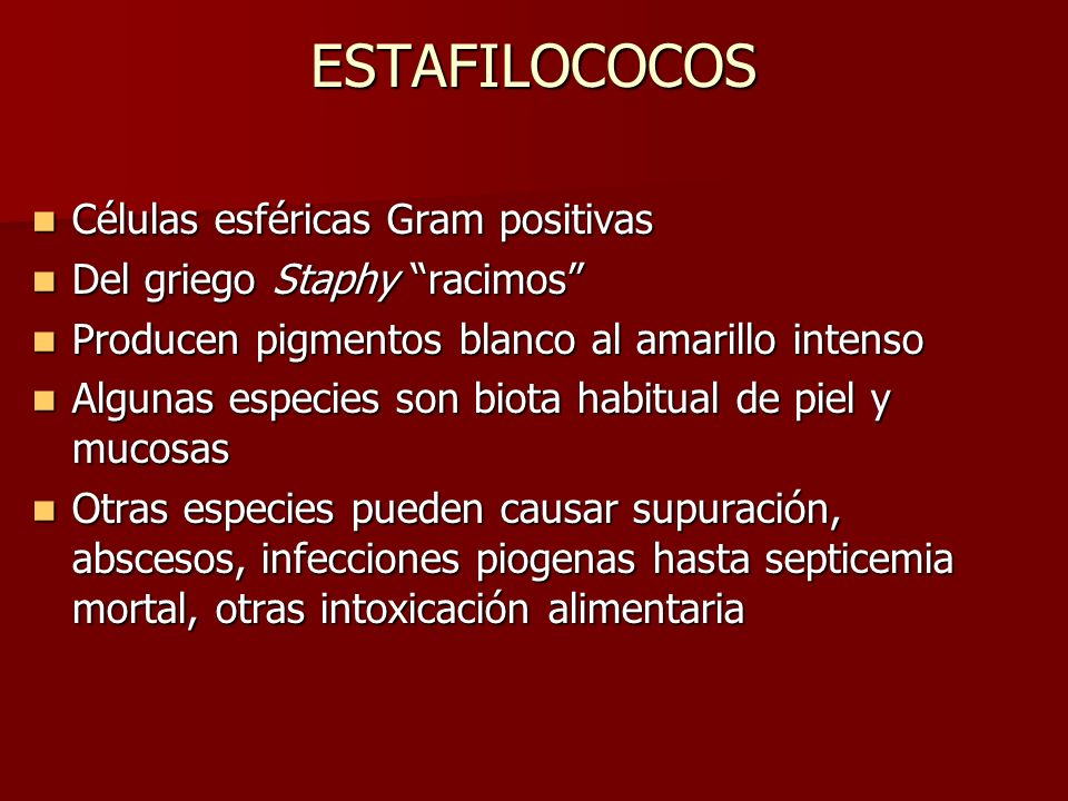 ESTAFILOCOCOS Staphylococcus aureus Biota habitual de nasofaringe, región perineal y piel; puede colonizar diversas superficies epiteliales y mucosas Biota habitual de nasofaringe, región perineal y piel; puede colonizar diversas superficies epiteliales y mucosas Puede diseminarse de la cepa endógena a sitios estériles o persona a persona por fomites Puede diseminarse de la cepa endógena a sitios estériles o persona a persona por fomites Puede transmitirse a partir de una lesión cutánea infectada de un profesional de la salud al paciente Puede transmitirse a partir de una lesión cutánea infectada de un profesional de la salud al paciente