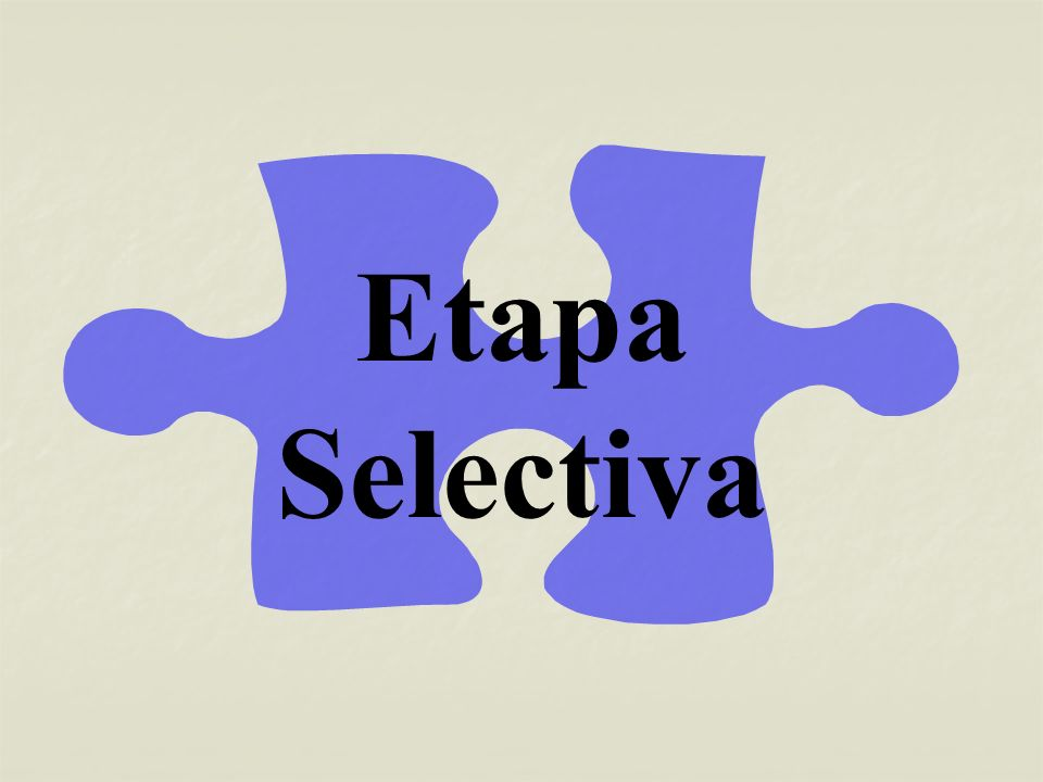 Criterios selectivos básicos Criterios justificativos/Criterios operativos Delimitación del tema Determinación genérica/Determinación específica Diseño del proyecto Acotación temática/Establecimiento de objetivos/Concreción metódica/ Formalización