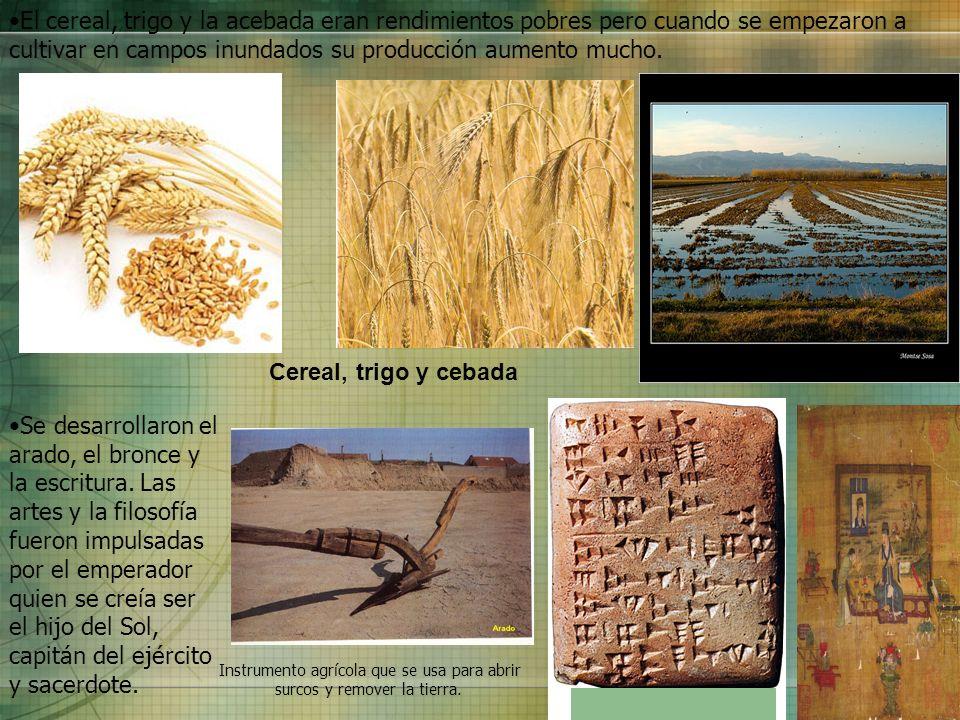 Cereal, trigo y cebada Se desarrollaron el arado, el bronce y la escritura. Las artes y la filosofía fueron impulsadas por el emperador quien se creía