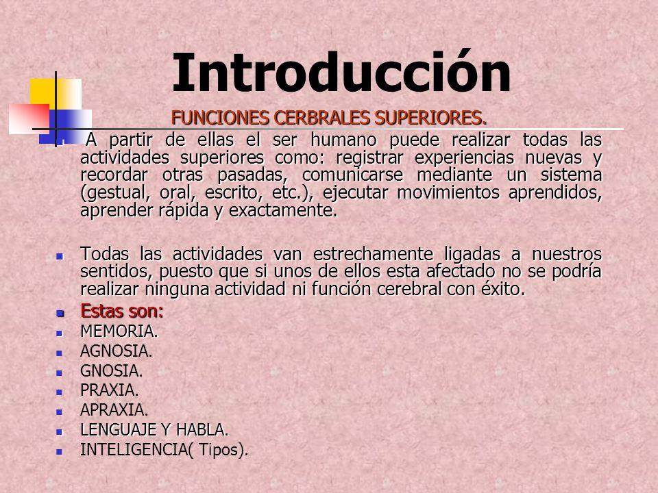 Introducción FUNCIONES CERBRALES SUPERIORES. A partir de ellas el ser humano puede realizar todas las actividades superiores como: registrar experienc