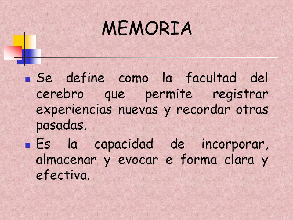 FASES DE LA MEMORIA APRENDIZAJE: Recepción y registro sensorial de la información ALMACENAMIENTO: Codificación y procesos de consolidación y olvidos RECUERDO: Evocación y reconocimiento