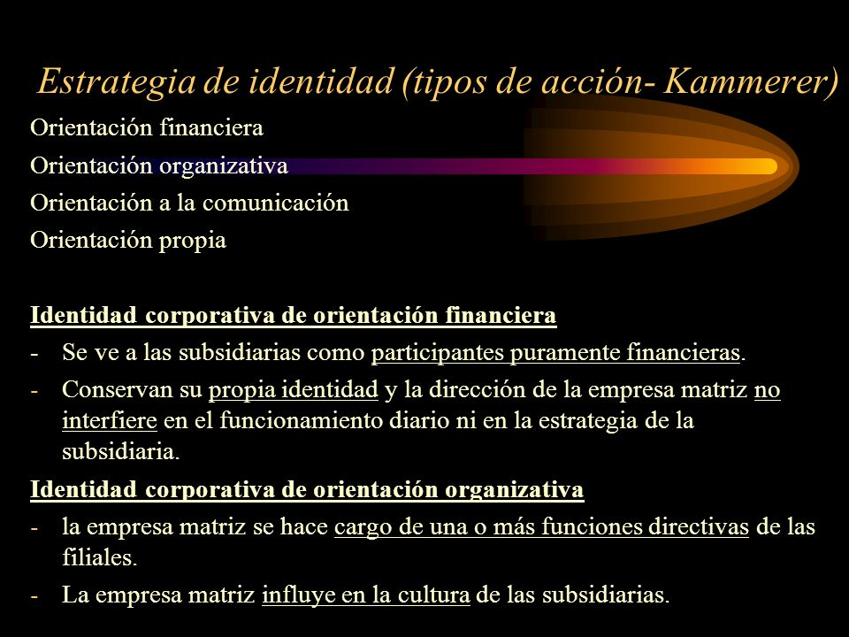 Estrategia de identidad (tipos de acción- Kammerer) Orientación financiera Orientación organizativa Orientación a la comunicación Orientación propia I