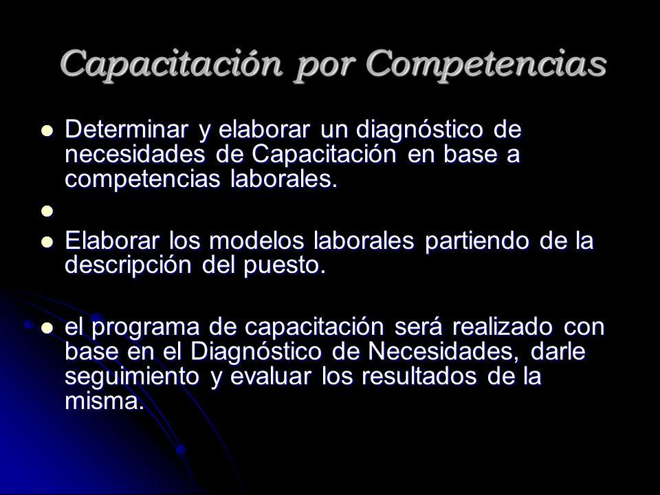 Capacitación por Competencias Determinar y elaborar un diagnóstico de necesidades de Capacitación en base a competencias laborales. Determinar y elabo