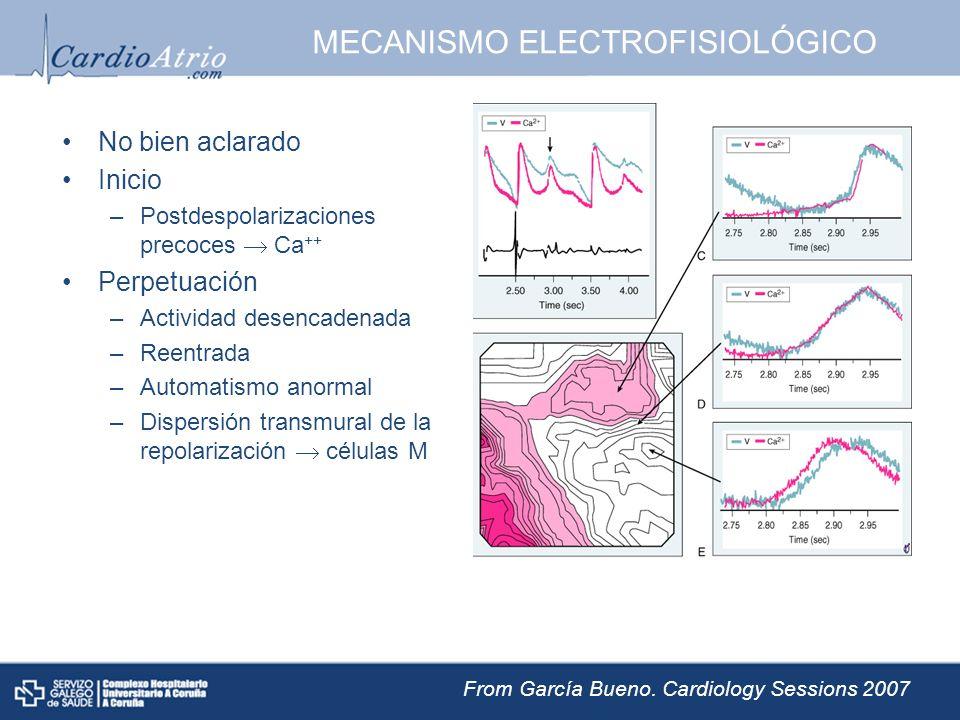 MECANISMO ELECTROFISIOLÓGICO No bien aclarado Inicio –Postdespolarizaciones precoces Ca ++ Perpetuación –Actividad desencadenada –Reentrada –Automatis