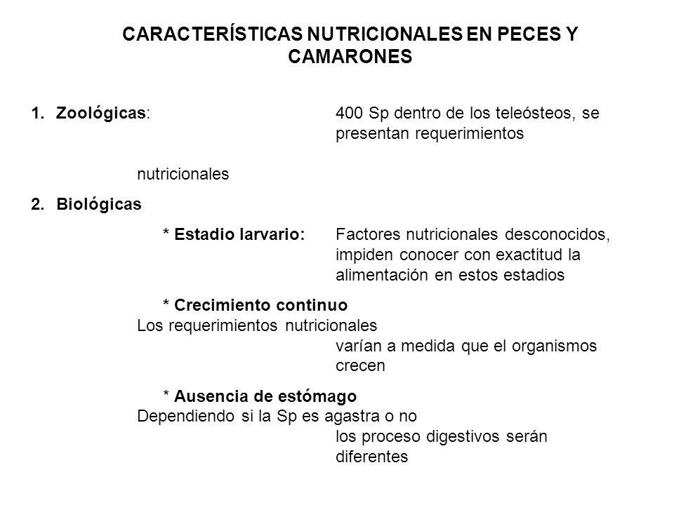 CARACTERÍSTICAS NUTRICIONALES EN PECES Y CAMARONES 1.Zoológicas:400 Sp dentro de los teleósteos, se presentan requerimientos nutricionales 2.Biológica