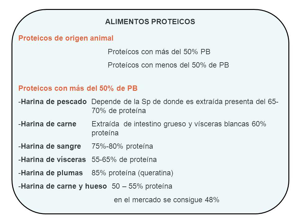 ALIMENTOS PROTEICOS Proteicos de origen animal Proteícos con más del 50% PB Proteícos con menos del 50% de PB Proteicos con más del 50% de PB -Harina