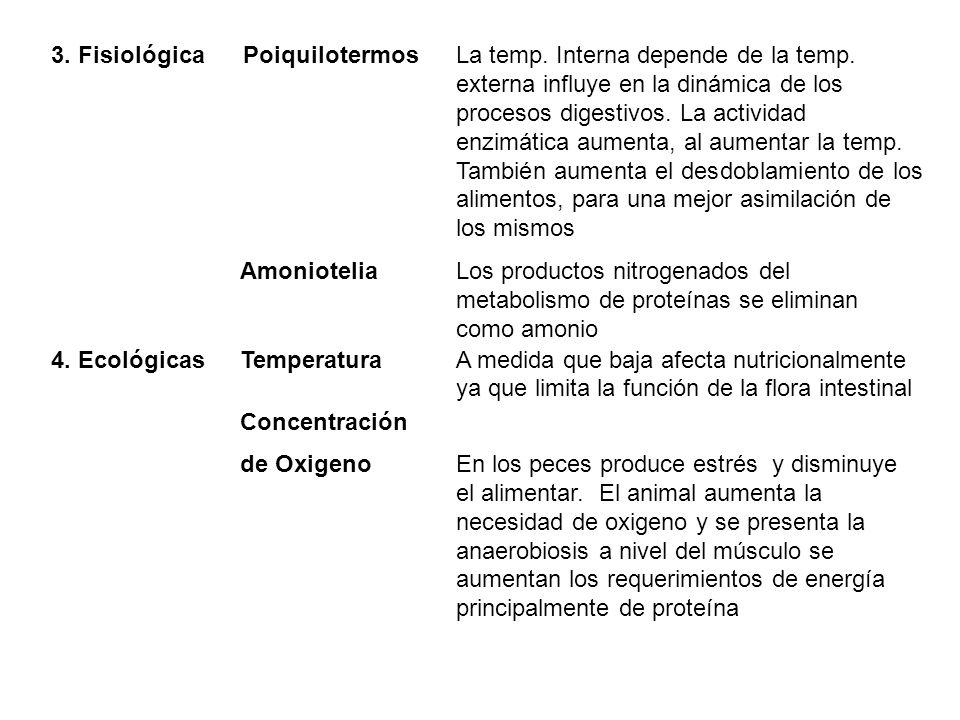 3. Fisiológica Poiquilotermos La temp. Interna depende de la temp. externa influye en la dinámica de los procesos digestivos. La actividad enzimática