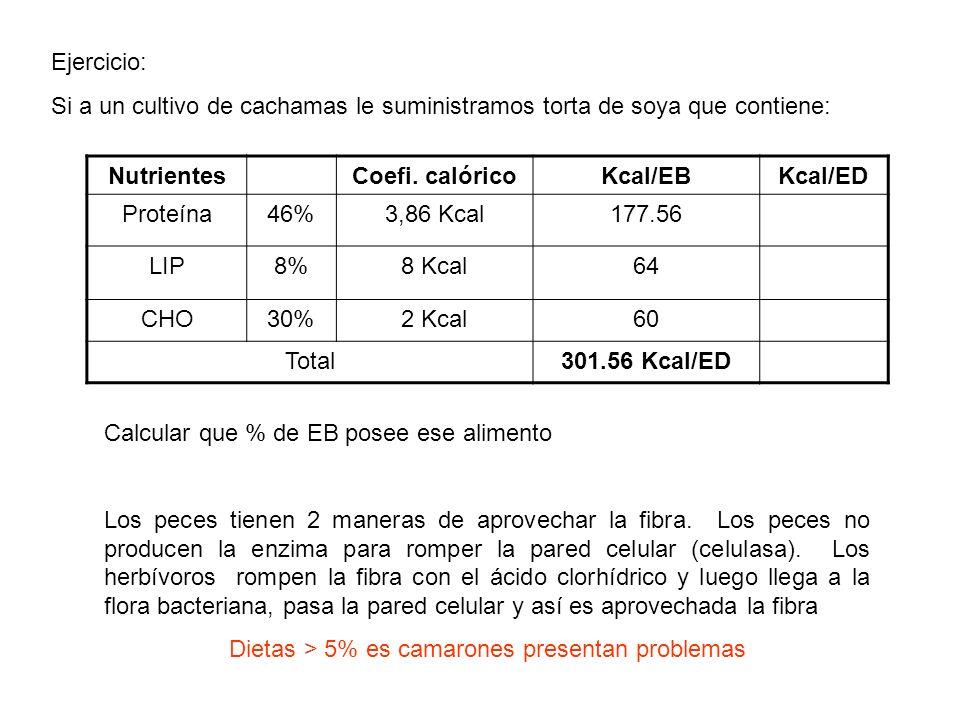 Ejercicio: Si a un cultivo de cachamas le suministramos torta de soya que contiene: NutrientesCoefi. calóricoKcal/EBKcal/ED Proteína46%3,86 Kcal177.56