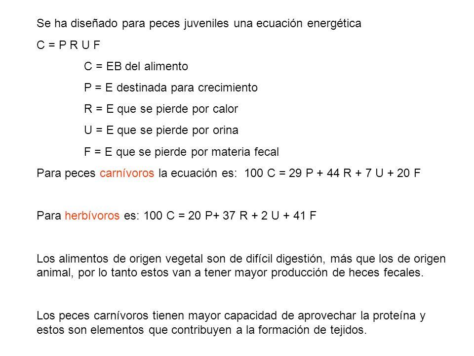 Se ha diseñado para peces juveniles una ecuación energética C = P R U F C = EB del alimento P = E destinada para crecimiento R = E que se pierde por c