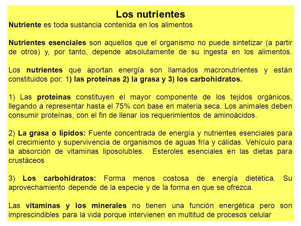 Los nutrientes Nutriente es toda sustancia contenida en los alimentos Nutrientes esenciales son aquellos que el organismo no puede sintetizar (a parti