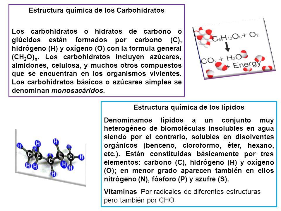 Estructura química de los Carbohidratos Los carbohidratos o hidratos de carbono o glúcidos están formados por carbono (C), hidrógeno (H) y oxígeno (O)