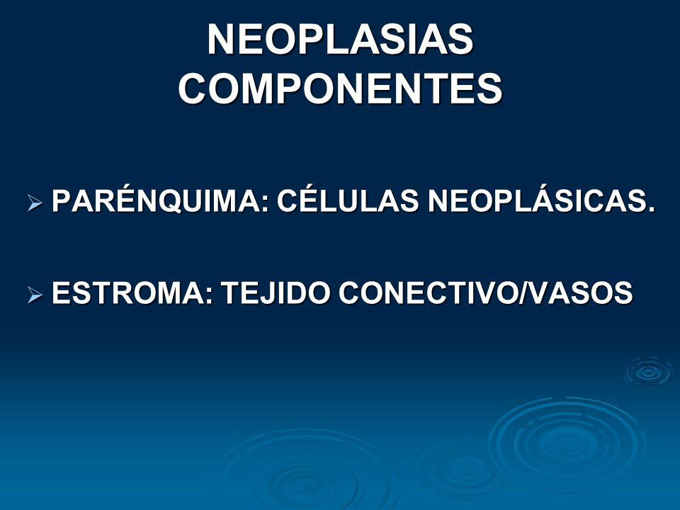 NEOPLASIAS COMPONENTES PARÉNQUIMA: CÉLULAS NEOPLÁSICAS. PARÉNQUIMA: CÉLULAS NEOPLÁSICAS. ESTROMA: TEJIDO CONECTIVO/VASOS ESTROMA: TEJIDO CONECTIVO/VAS