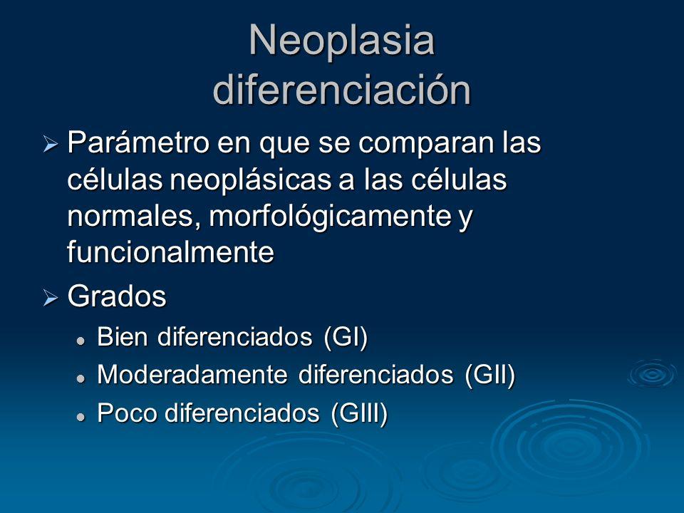 Neoplasia diferenciación Parámetro en que se comparan las células neoplásicas a las células normales, morfológicamente y funcionalmente Parámetro en q