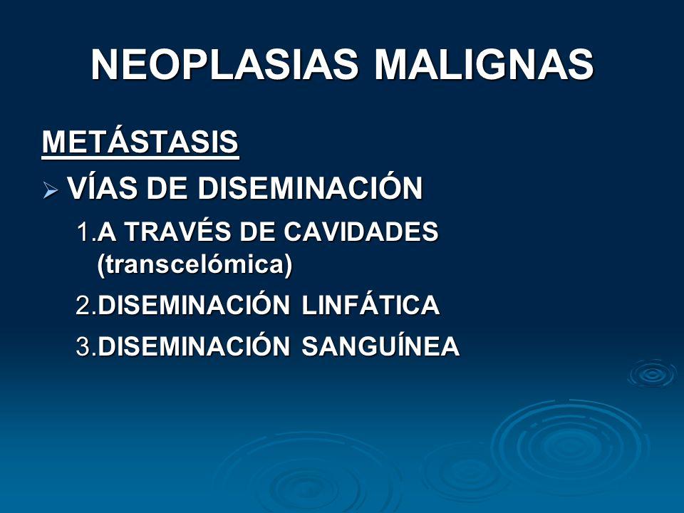 NEOPLASIAS MALIGNAS METÁSTASIS VÍAS DE DISEMINACIÓN VÍAS DE DISEMINACIÓN 1.A TRAVÉS DE CAVIDADES (transcelómica) 2.DISEMINACIÓN LINFÁTICA 3.DISEMINACI