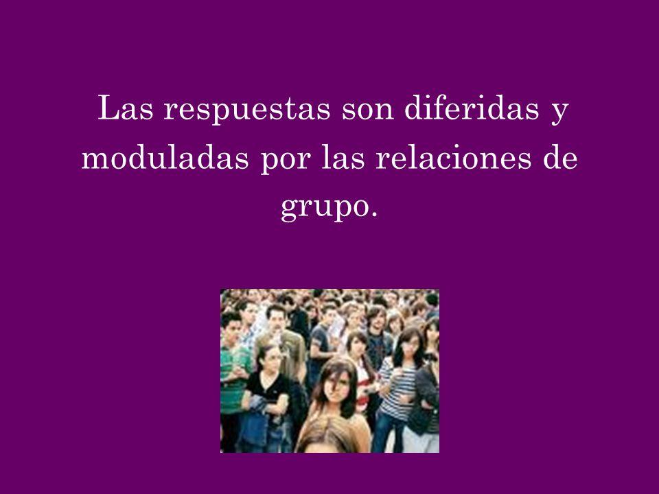 Las respuestas son diferidas y moduladas por las relaciones de grupo.