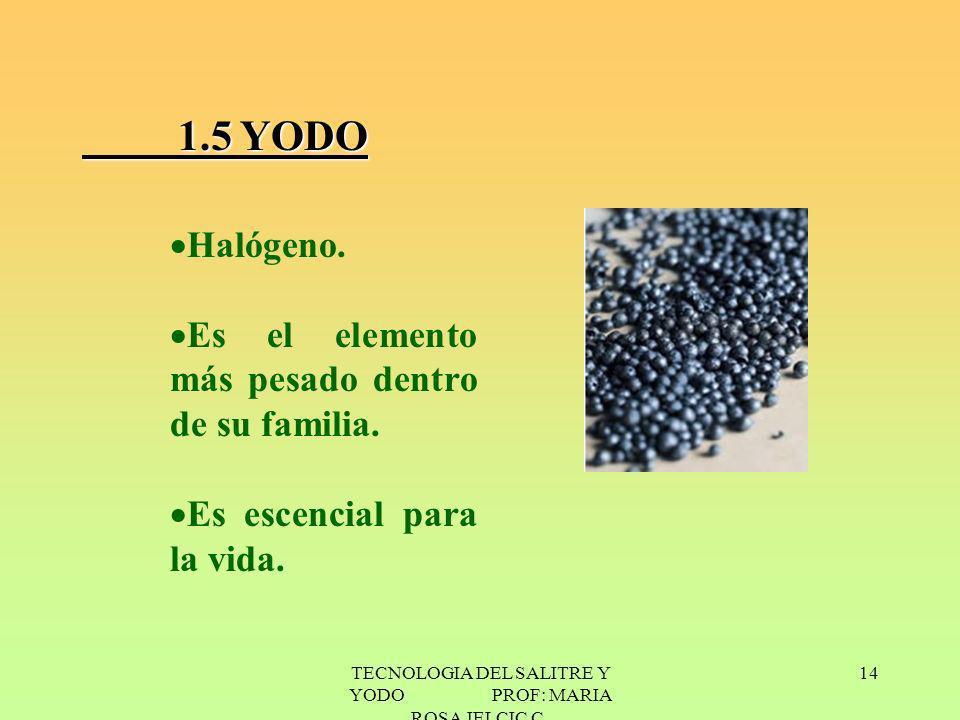 TECNOLOGIA DEL SALITRE Y YODO PROF: MARIA ROSA JELCIC C. 14 1.5 YODO Halógeno. Es el elemento más pesado dentro de su familia. Es escencial para la vi