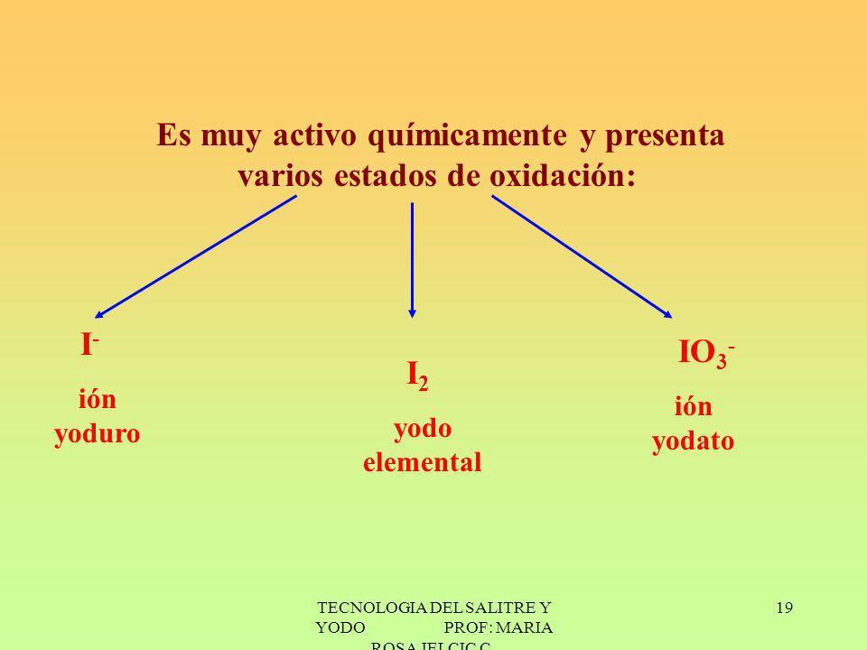 TECNOLOGIA DEL SALITRE Y YODO PROF: MARIA ROSA JELCIC C. 19 Es muy activo químicamente y presenta varios estados de oxidación: I - ión yoduro I 2 yodo