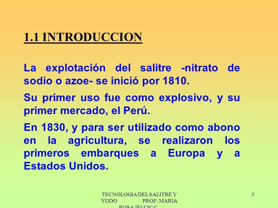 3 1.1 INTRODUCCION La explotación del salitre -nitrato de sodio o azoe- se inició por 1810. Su primer uso fue como explosivo, y su primer mercado, el