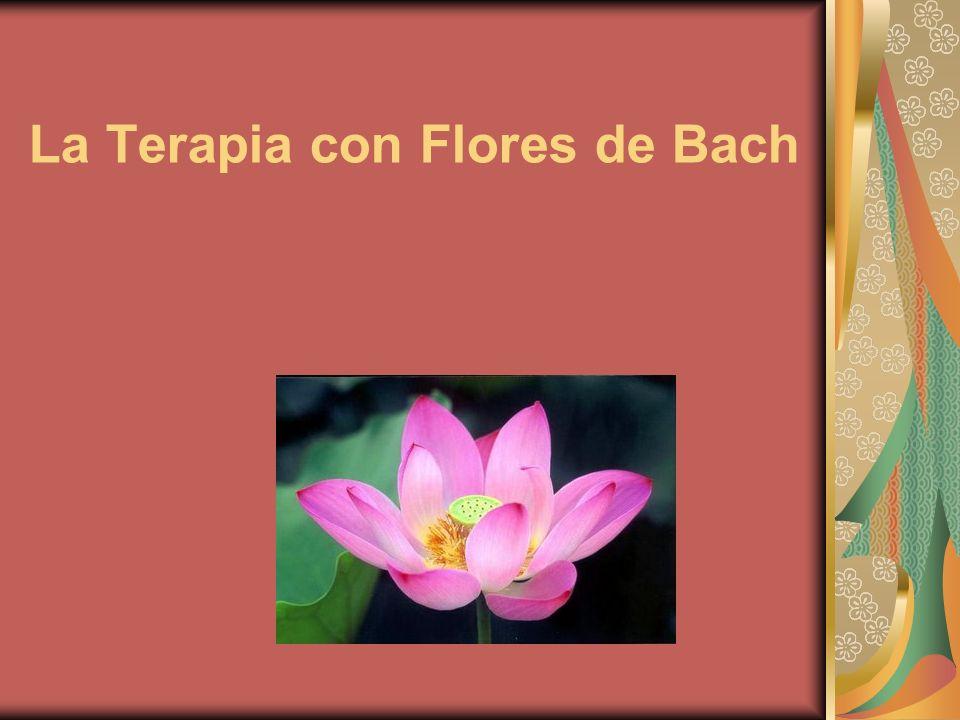 La medicina floral de Bach es una medicina natural, la cual se basa en la concepción de que somos una unidad psicosómatica, donde no se prioriza la enfermedad sino al enfermo.